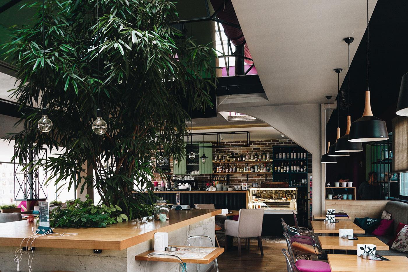 Paparazzi Cafe (4)